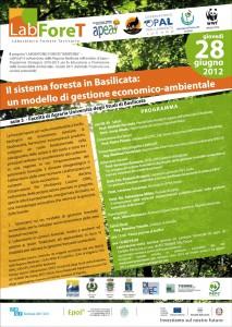 Il sistema foresta in Basilicata: un modello di gestione economico-ambientale